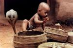 child playing next to cobras in their baskets in India