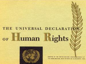 theuniversaldeclarationofhumanrights